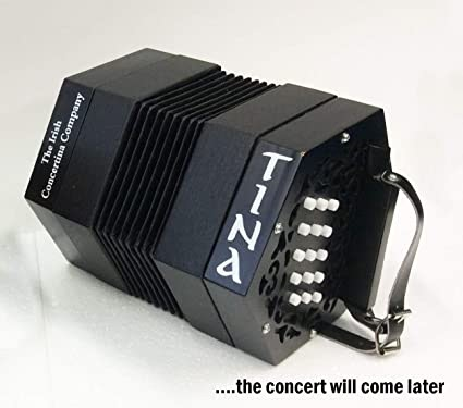 Learn How to Play Music With Concertina for Beginners – What Is it?
