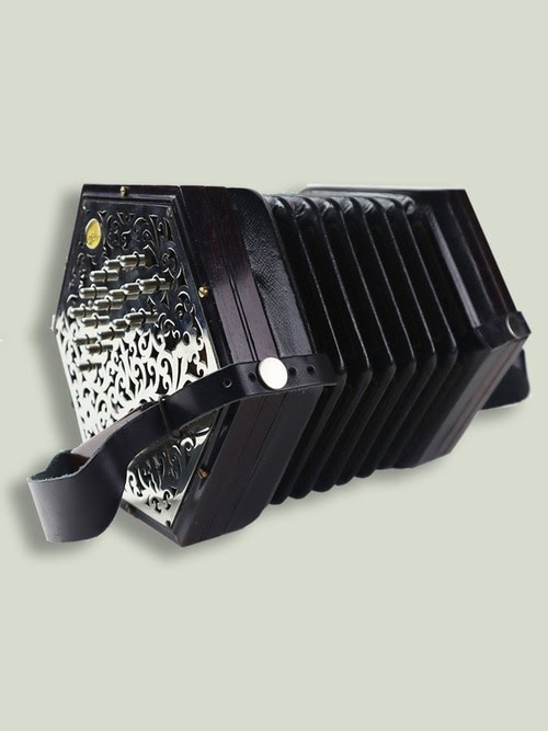 Learning to Play the Concertina